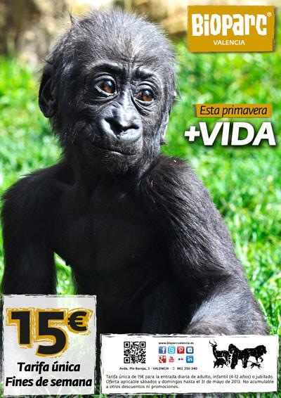 Bioparc Valencia - +Vida esta primavera. 15 euros