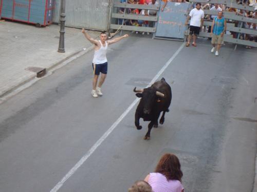 Un joven llama a un toro durante uno de los actos taurinos de la pedanía norte de Valencia