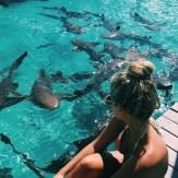 las gurús de la moda que arrasan en internet con sus fotos en bikini (2)