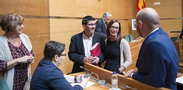 Pleno de la Diputación. (Foto-Abulaila).