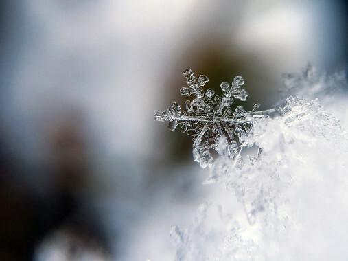 Por-que-el-agua-caliente-puede-congelarse-antes-que-la-fria_image_380