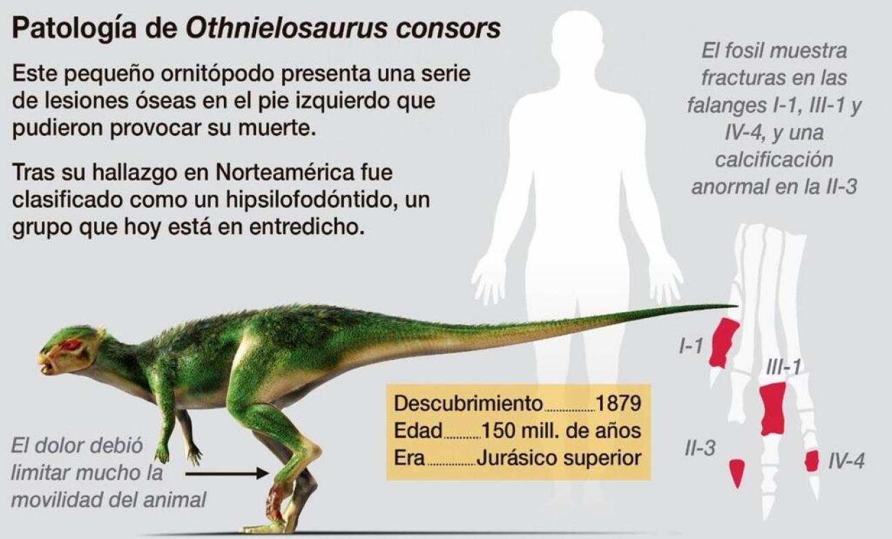 Othnielosaurus
