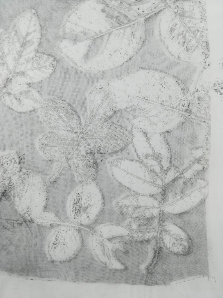 valentina-semprini-monoprint (98)