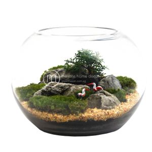 Bultnik Ready Made Terrarium