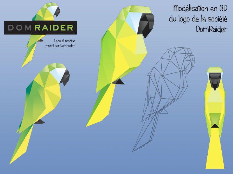 Logo Domraider en 3D