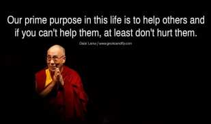 Dalai Lama Help Don't Hurt