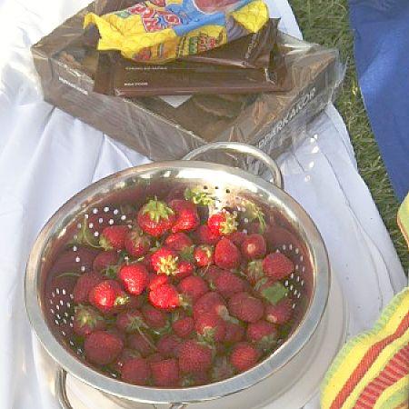 Midsummer_strawberries_opt