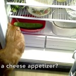 Bev's cat Teddy searches for its dinner