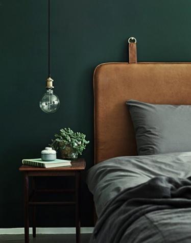 Paint Your Bedroom Walls Dark Valet