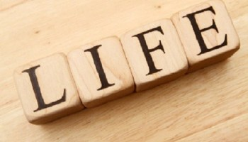 """Four blocks spelling out """"Life"""""""