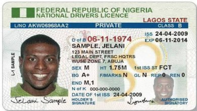 Photo of How To Apply For Drivers License