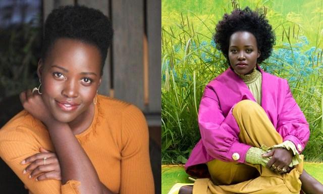 Nigerians unhappy as Lupita Nyong'o will star in Adichie's Americanah as Igbo girl.
