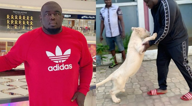 Music mogul Soso Soberekon shares video of him playing with his pet lion