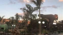 T-REX Park Campinas2