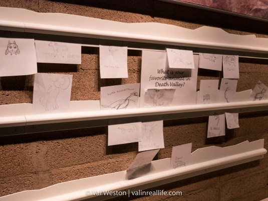Share your thoughts on what you love about Death Valley at the visitor center.