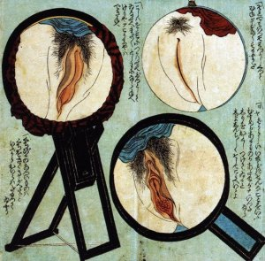shunga vulva 1850 unknown