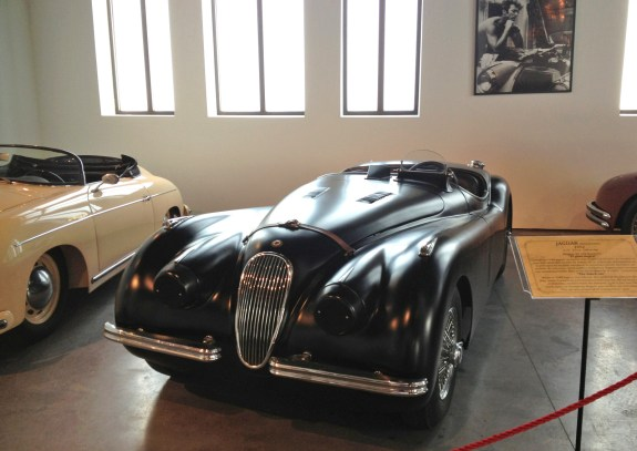 Jaguar 'The black cat'