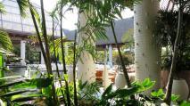 mayan-palace-nvo-vallarta-santuario-lounge.jpg