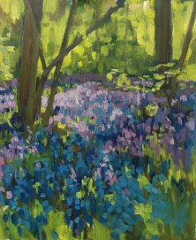 Bluebells PW 2016