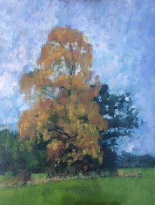 Autumn trees NHF 2015