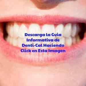 Descargar guia informativa de Denti-Cal
