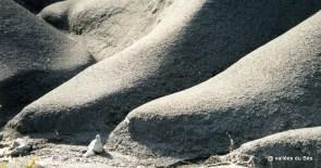 robine pied