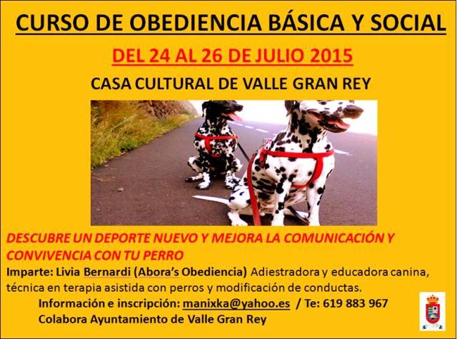 Curso de Obediencia Básica y Social Canina en Valle Gran Rey