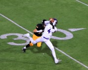 Dylan Lettice makes the catch