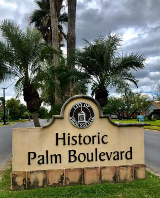Historic homes line Palm Boulevard, a place where young professionals are buying homes.