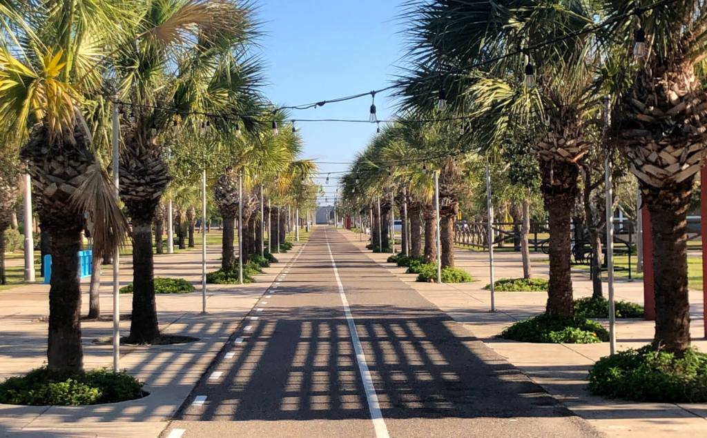 Palm trees line the start of the Brownsville Historic Battlefield Trail in the Mitte Cultural District.