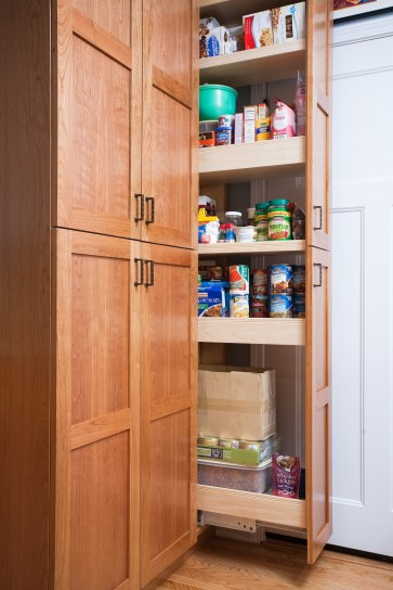 Sunnyvale Kitchen Pantry Drawer Open (OK)