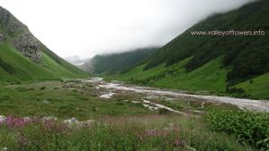 valley of flowers in July, 2007