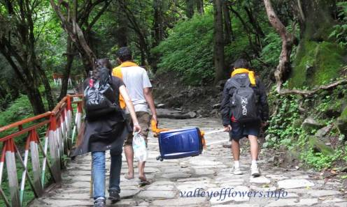 Valley of flowers trek Govindghat to Ghangaria. These guys are taking a suitcase on the trek.