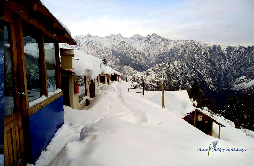 Blue Poppy Resorts at Auli in Winters