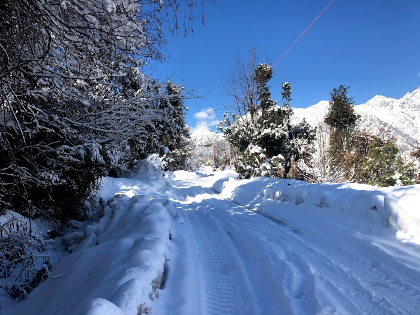 How to reach Auli from Joshimath : By hiring local 4x4 vehicle. The road condition in Feb 2020