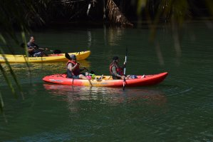 Adventure Kayaking in the Valley of the Latte on Guam. Adventure, Tours, Activities, and Fun on Guam.