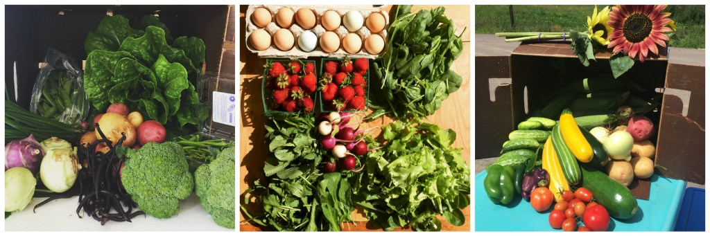 Fresh produce CSA shares