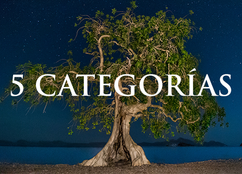 Concurso de fotografía Visión Forestal y Centinelas del Tiempo