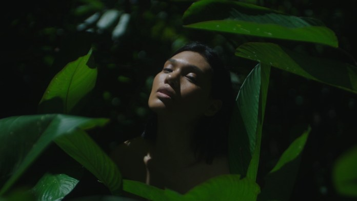 Natura lanza la campaña por el Amazonia