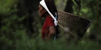 Scotiabank coloca primer bono con enfoque de género en México