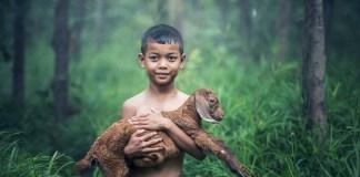 La ONU publica 'Agenda ambiental de 2021'