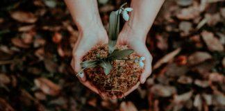 ¿La contribución al desarrollo sostenible debe ser igual?