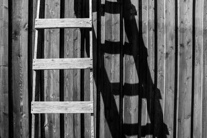 La escalera de la mortalidad