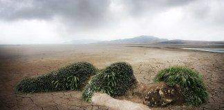 El mundo necesita un planeta verde, pero está en alerta roja