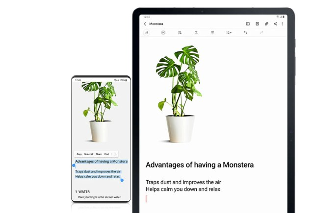Samsung presenta el One UI 3.1, la reciente actualización del software de sus smartphones.