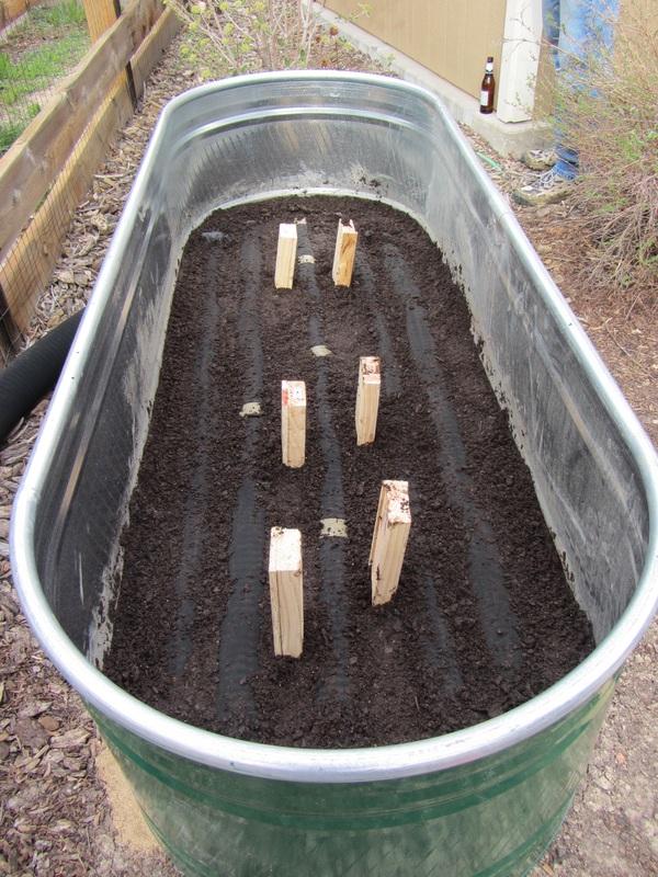 Garden Trough Planters