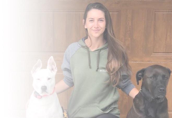 Spokane dog training specialist