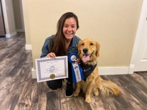 service dog team golden retriever assistance