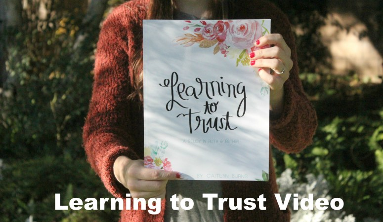 Learning to Trust Video