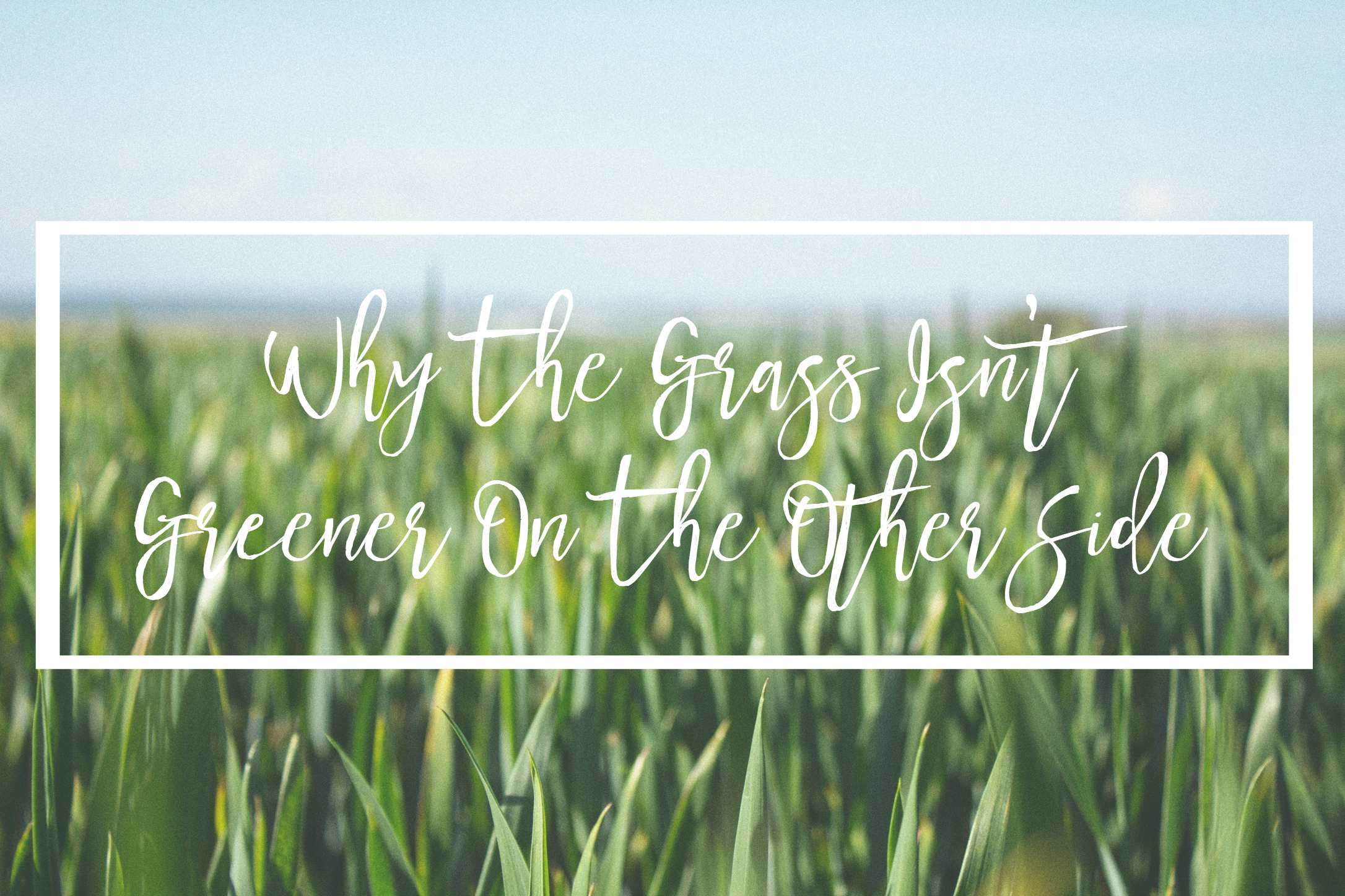 What is Grass is Greener Syndrome?